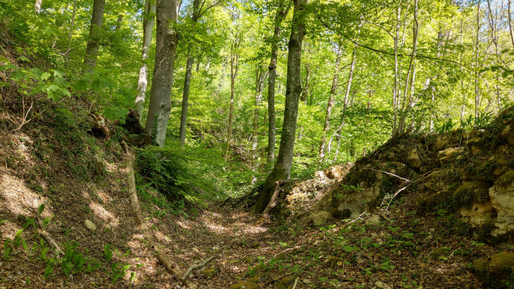 der-roemerweg-roemerstrasse_boezberg-west_23-04-20c_1000