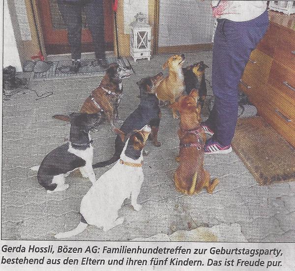 Hunde_TW_28-01-16_600